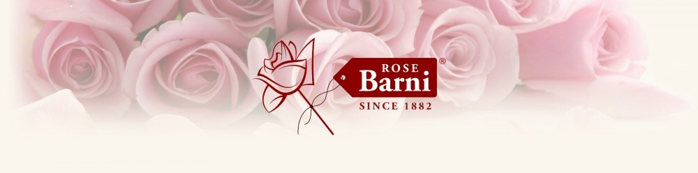 Rose Barni – Eventi e Notizie